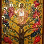 V Domenica di Pasqua ( Anno B )